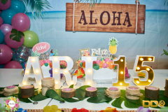 DDO_festa-15-anys-ari-2