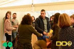 DDOcat 40 Aniv Maxi (14)