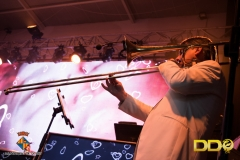 DDO_concert_quart (8)